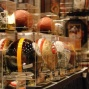 Sports Memorabilia