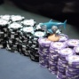 "Michael ""TheSharkBoy"" Palti's Chip Stack"