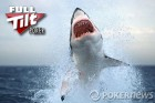 Rsultats poker online : 'asforr' mate les sharks du 1K Monday