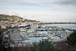 The harbor in Cannes
