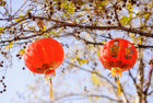Crown's Lunar New Year Celebration