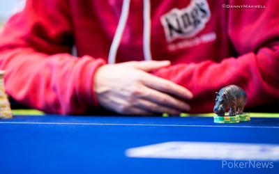 Small Pots And Asian Hippos PokerStars EPT Season Prague - Hippopotamus pool table