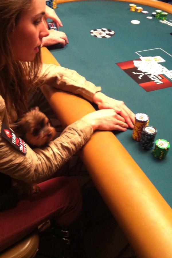 All Mucked Up: 2012 World Series of Poker Day 15 Live Blog 107