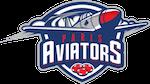 Paris Aviators