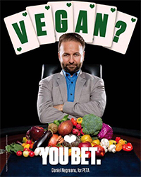 "Daniel Negreanu Tells All: ""I Don't Care How I Do At the World Series Financially"" 107"