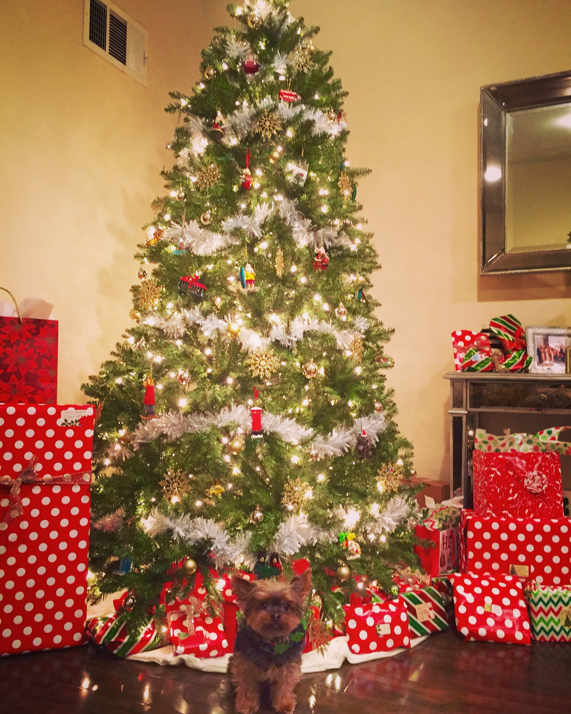 Chris Moorman's Christmas Tree