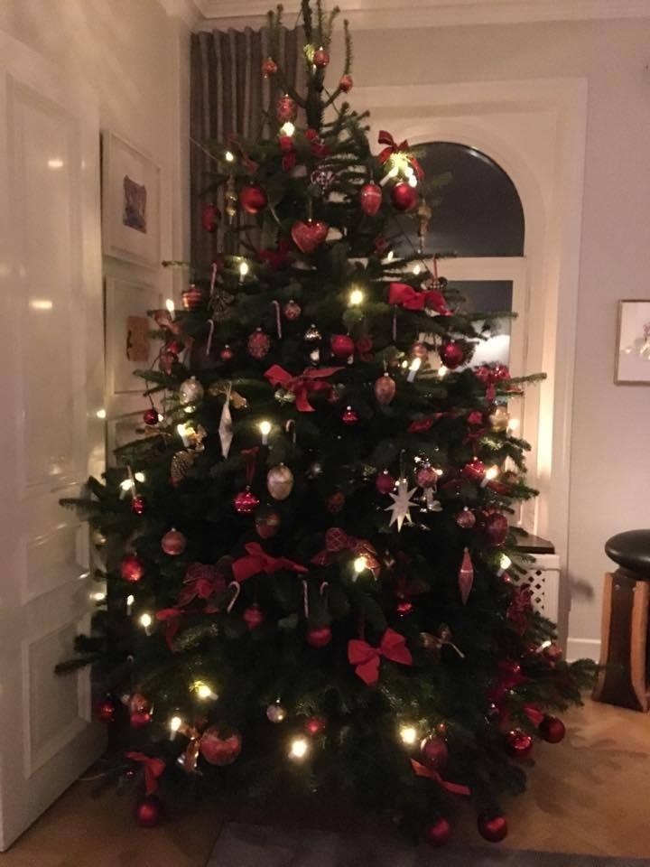 Sofia Lovgren's Christmas tree
