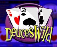 A Complete Beginner's Guide to Deuces Wild Video Poker 106
