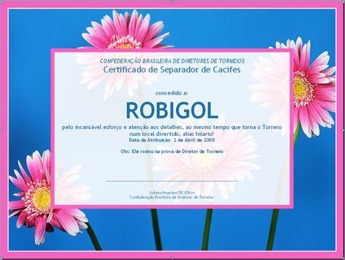 RobiGol – Director de Torneios é só Uma entre 1000 Profissões! 103