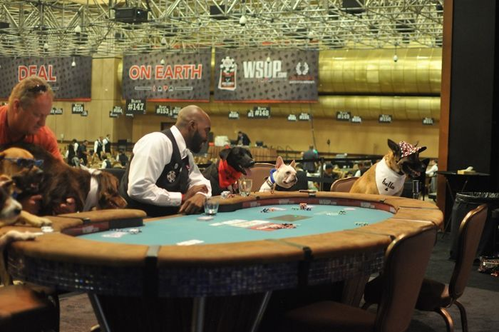 All Mucked Up: 2012 World Series of Poker Day 45 Live Blog 114