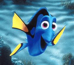 Полный экстрим! или «Где же ты рыба мОя?» 101