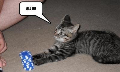 Pokerio strategija: žvejyba pelkėje 103