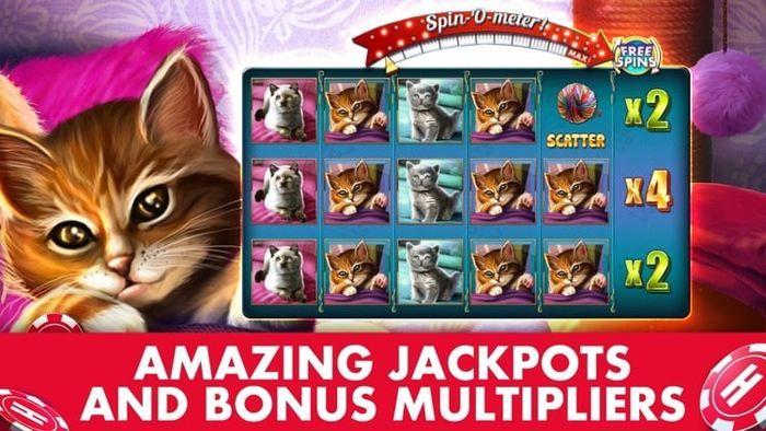 Book casino cat sport top national lottery gambling