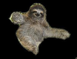 The Sloth Rule