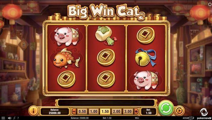 Big Win Cat Slots