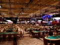 WSOP Through the Lens: Part I 101