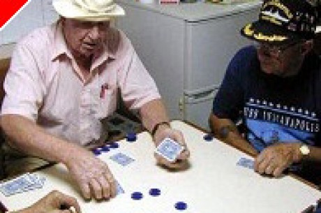 Poker pals gather daily under Port Orange bridge