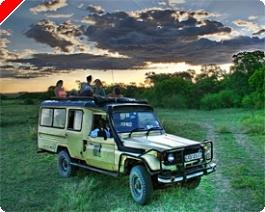 Multi Level Mike op Safari