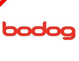 To Bodog ανακοινώνει σειρά ανοιχτών πρωταθλημάτων...