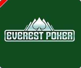 Har du det der skal til for at blive professionel pokerspiller?