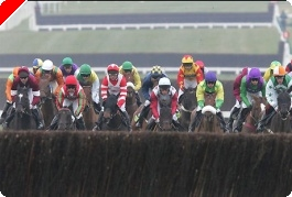 Cheltenham Called Off! - Paddy Power Poker to the Rescue!