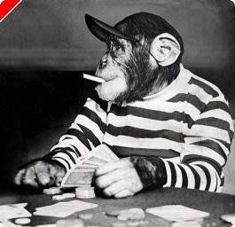 イギリス、ポーカー関連報道増える