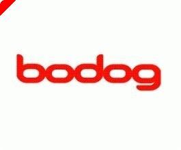 Bodog Poker, 플레이어에게 파이널 테이블에 프리 웨이를 제공