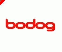Bodog Poker Open II Turnierplan