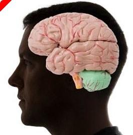 Ο Ψυχολόγος Tου Poker - Η Θεωρία Attribution