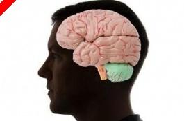 O Ψυχολόγος του Πόκερ : Η αξιοπρόσεκτη διαφορά