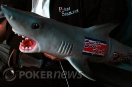 PokerNews Op-Ed: Save the Sharks