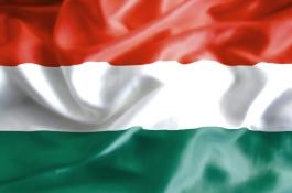 2009 nagy eseményei: Magyar sikerek 2009-ben