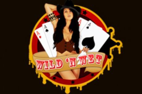 野性潮湿的扑克巡迴赛