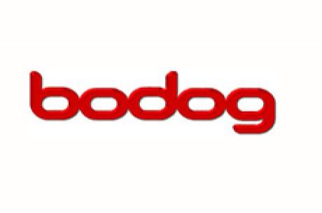 PokerNews kjører $500 Freeroll hos Bodog
