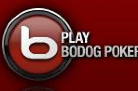 Bodog Poker $500 freeroll turnering starter i morgen, ingen kvalifiseringskrav!
