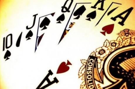 Divoký týden ve světě pokeru (9. týden 2011)