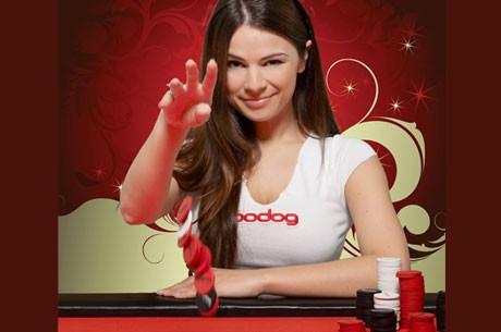 Bodog Poker Pomaže Novajlijama!