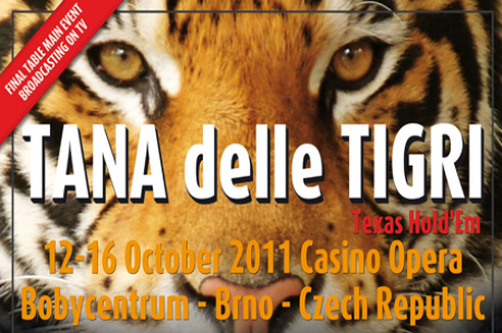 Kdo bo oktobra v Brnu pregnal tigra iz brloga?