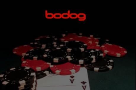 Новости дня: Bodog Poker: ты кто такой? давай, до свиданья...