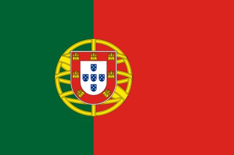 Очередной полицейский рейд в Португалии закрыл...
