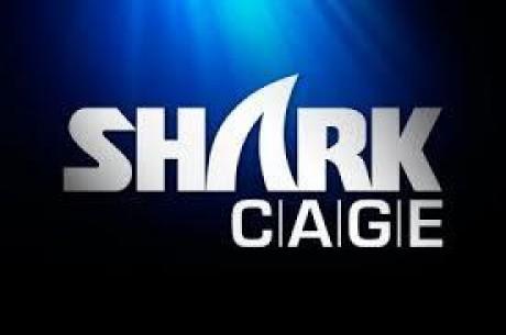 '블러프가 게임을 바꾼다' 포커스타즈가 선보이는 TV쇼.'샤크 케이지'