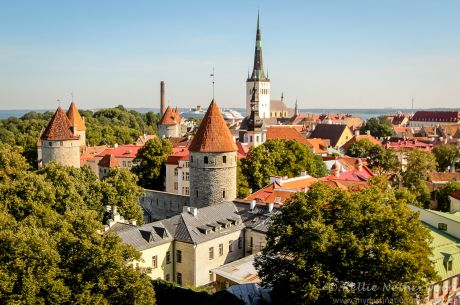 Kings of Tallinn Poker Festival Set to Bring Top-Level Poker Action Back to Estonia