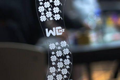 Resumen del WC Micro Series: Éxito Total