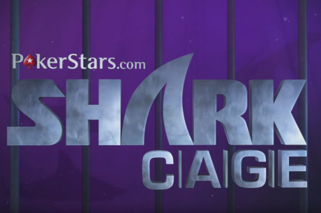 Temporada 2 do Shark Cage - Episódios 1, 2 e 3