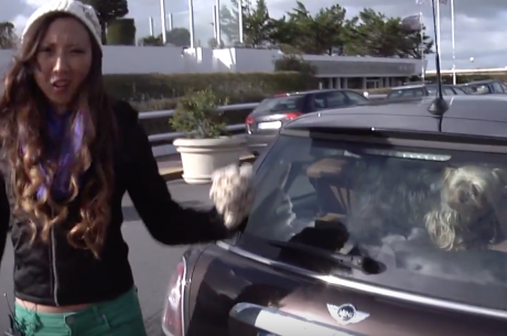 Throwback Thursday: Kristy Gives a F***in' Tour