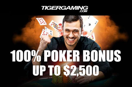 Start 2017 With a Bang With TigerGaming's $100K New Year's Special