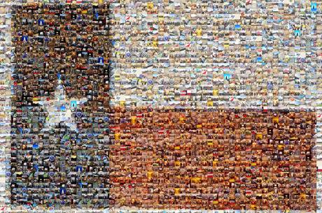 Texas State Flag Mosaic