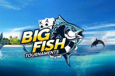 888poker Launches $100,000 Guaranteed Daily Big Fish Series