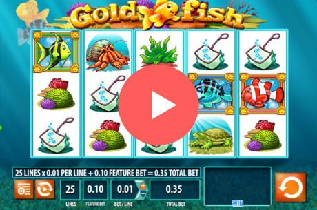 Gold Fish Slots: Get One Year of Free Spins to Play Online
