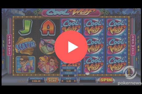 Cool Wolf Slot Machine Online: 2,000 Credits to Play For Free